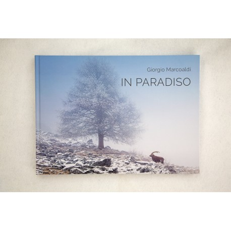 In Paradiso - Appunti di viaggio